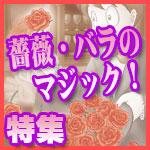 薔薇・バラのマジック 特集!
